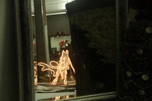 2012-1225-christmas-cards-lights-by-dennis-pittman-172