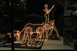 2012-1225-christmas-cards-lights-by-dennis-pittman-180