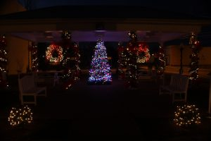 2012-1225-christmas-cards-lights-by-dennis-pittman-45