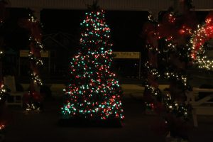 2012-1225-christmas-cards-lights-by-dennis-pittman-58