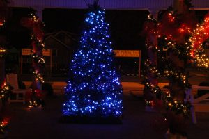 2012-1225-christmas-cards-lights-by-dennis-pittman-63