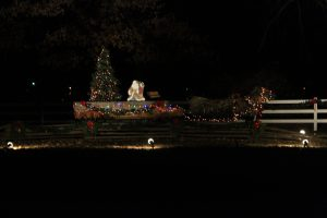 2012-1225-christmas-cards-lights-by-dennis-pittman-75