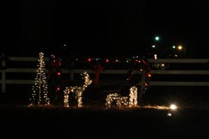 2012-1225-christmas-cards-lights-by-dennis-pittman-76