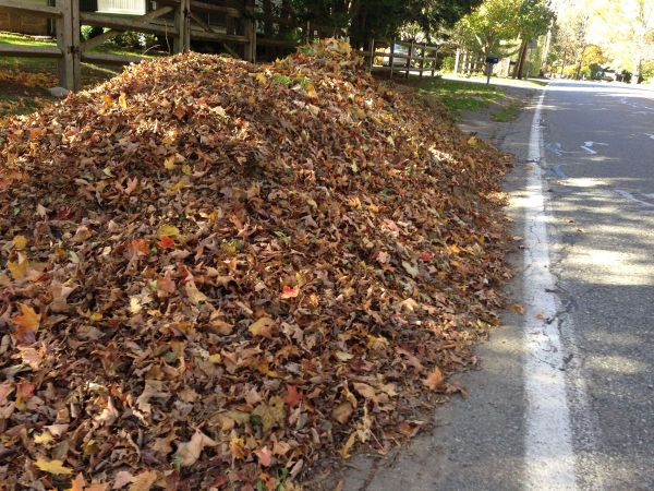 City Of Fulton Leaf Pick Up Begins